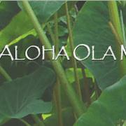 SMART EHR Customer Kū Aloha Ola Mau